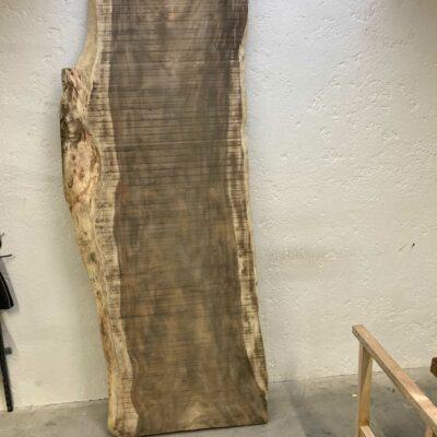 109 cm wide Parota from Costa Rica with a unique live edge