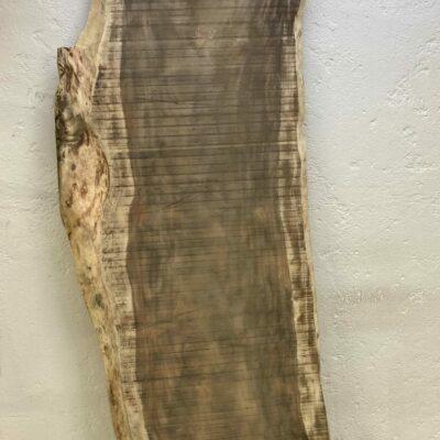 109 cm široká Parota z Costa Ricy s unikátní živou hranou