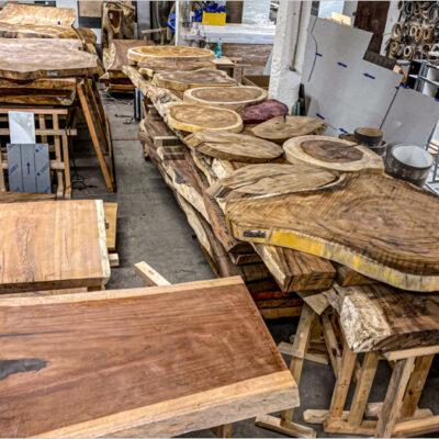 Mix našich dřevin u nás na skladě