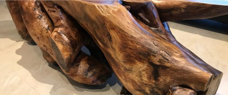 Luxusní masivní kořen z exotické Paroty